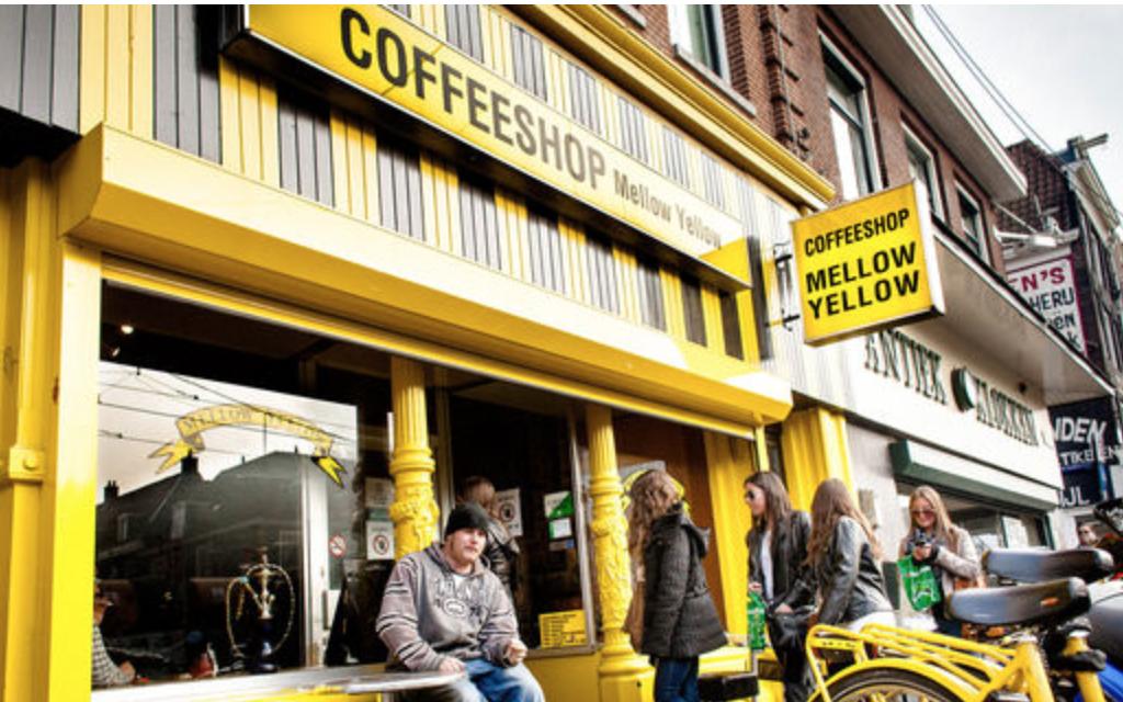 Tại sao ngày càng nhiều quán cà-phê ở Amsterdam đóng cửa?